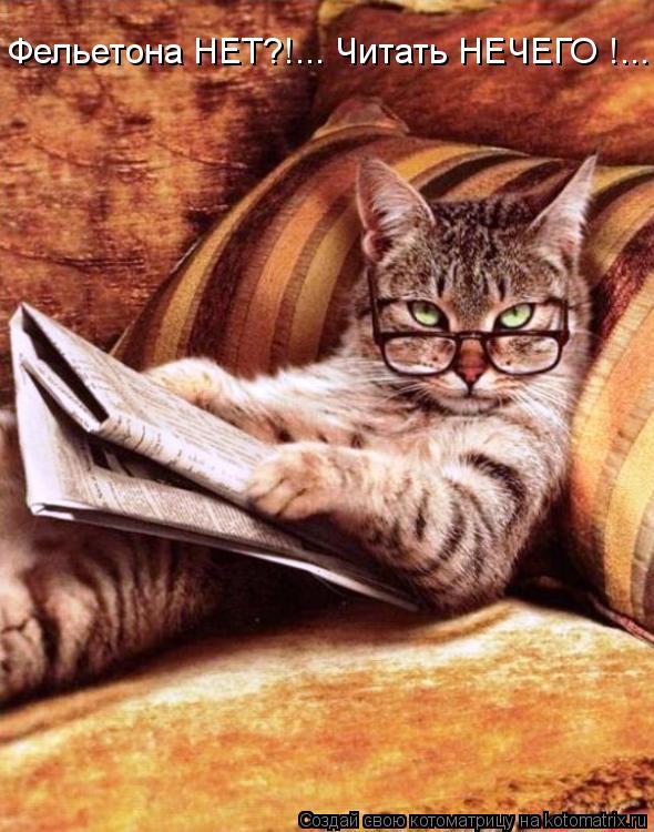 Котоматрица: Фельетона НЕТ?!... Читать НЕЧЕГО !...