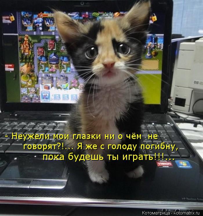 Котоматрица: - Неужели мои глазки ни о чём  не говорят?!... Я же с голоду погибну, пока будешь ты играть!!!...