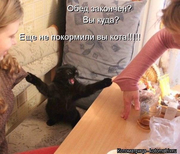 Котоматрица: Обед закончен? Вы куда? Еще не покормили вы кота!!!!!