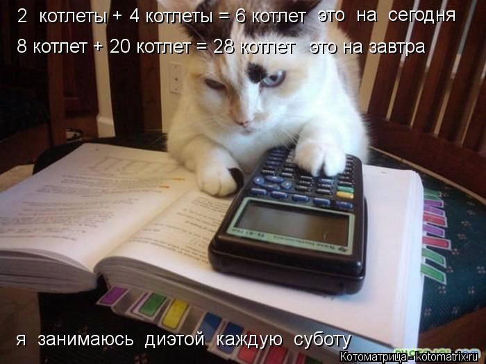 Котоматрица: 2  котлеты + 4 котлеты = 6 котлет это  на  сегодня 8 котлет + 20 котлет = 28 котлет это на завтра я  занимаюсь  диэтой  каждую  суботу