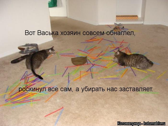 Котоматрица: Вот Васька хозяин совсем обнаглел, роскинул все сам, а убирать нас заставляет.