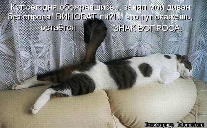 Котоматрица: Кот сегодня обожравшись... занял мой диван без спроса! ВИНОВАТ ли?!... что тут скажешь,  остаётся ЗНАК ВОПРОСА!