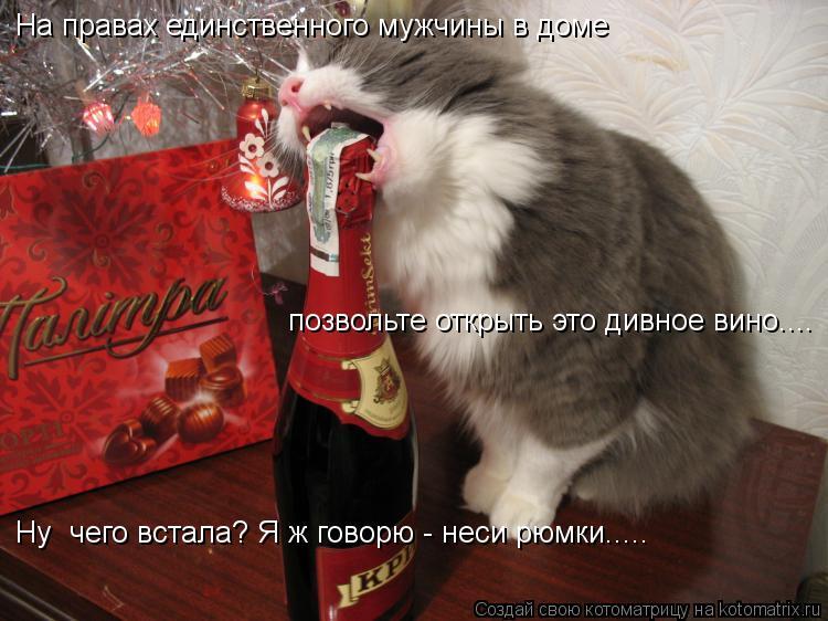 Котоматрица: На правах единственного мужчины в доме позвольте открыть это дивное вино.... Ну  чего встала? Я ж говорю - неси рюмки.....