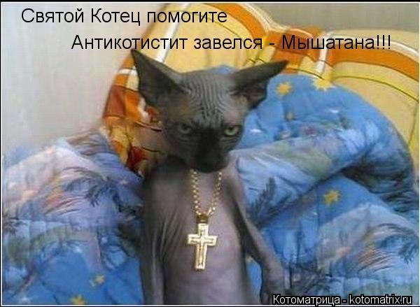 Котоматрица: Святой Котец помогите Антикотистит завелся - Мышатана!!!