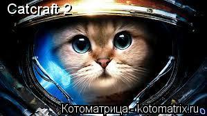 Котоматрица: Catcraft 2