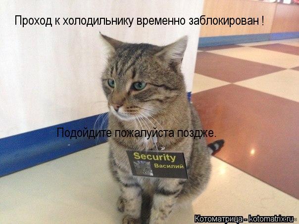 Котоматрица: Проход к холодильнику временно заблокирован Подойдите пожалуйста поздже. !