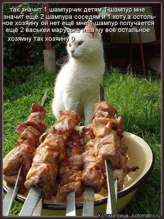 Котоматрица: так значит 1 шампурчик детям 1 шампур мне значит ещё 2 шампура соседям и 1 коту,а остоль- ное хозяину ой нет ещё мне 1 шампур получается  ещё 2 ва