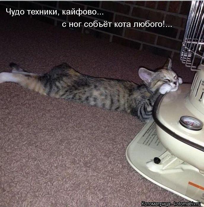 Котоматрица: Чудо техники, кайфово... с ног собъёт кота любого!...