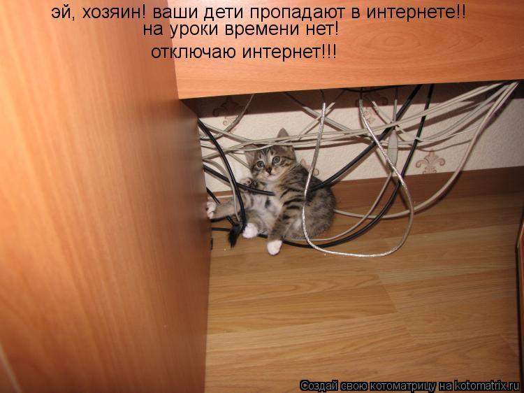 Котоматрица: эй, хозяин! ваши дети пропадают в интернете!! на уроки времени нет! отключаю интернет!!!