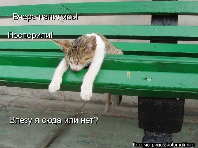 Котоматрица: Вчера напились! Поспорили! Влезу я сюда или нет?