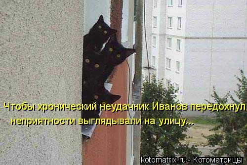 Котоматрица: Чтобы хронический неудачник Иванов передохнул, неприятности выглядывали на улицу...