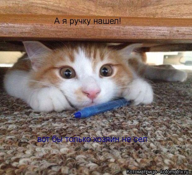 Котоматрица: А я ручку нашел! вот бы только хозяин не сел
