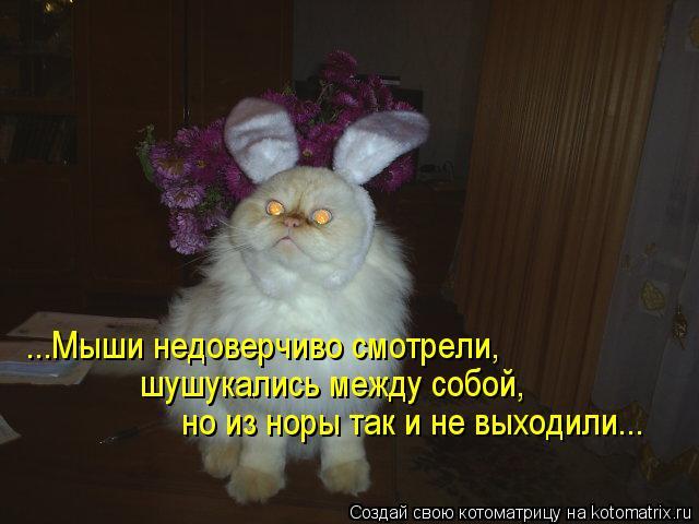 Котоматрица: ...Мыши недоверчиво смотрели,  шушукались между собой,  но из норы так и не выходили...