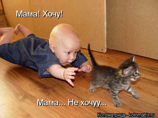 Котоматрица: Мама! Хочу! Мама... Не хочуу...
