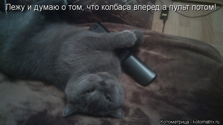 Котоматрица: Лежу и думаю о том, что колбаса вперед а пульт потом!