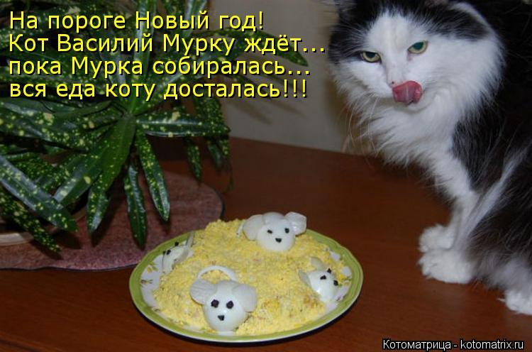 Котоматрица: На пороге Новый год! Кот Василий Мурку ждёт... пока Мурка собиралась... вся еда коту досталась!!!