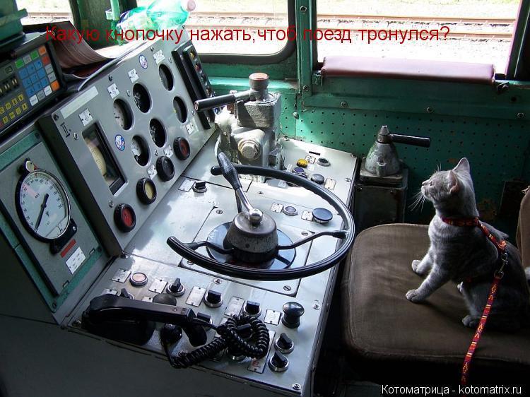 Котоматрица: Какую кнопочку нажать,чтоб поезд тронулся?