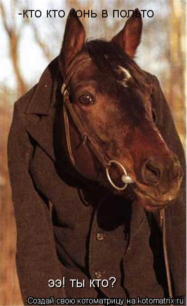 Котоматрица: ээ! ты кто? -кто кто конь в польто