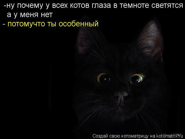 Котоматрица: -ну почему у всех котов глаза в темноте светятся а у меня нет - потомучто ты особенный