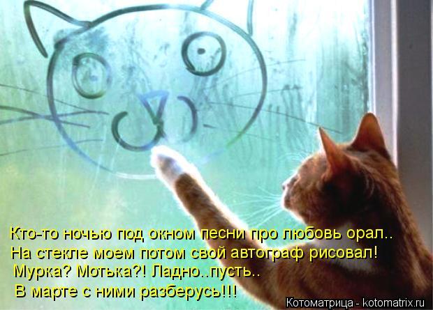 Котоматрица: Кто-то ночью под окном песни про любовь орал.. На стекле моем потом свой автограф рисовал! Мурка? Мотька?! Ладно..пусть.. В марте с ними разберу