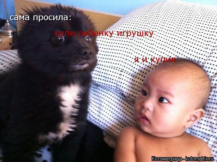 Котоматрица: сама просила: купи ребенку игрушку я и купил