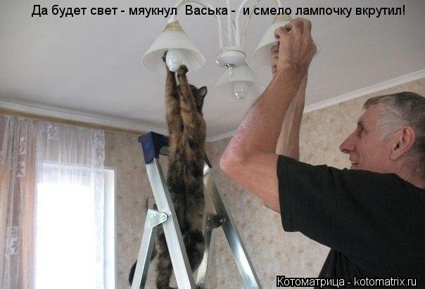 Котоматрица: Да будет свет - мяукнул  Васька -  и смело лампочку вкрутил!