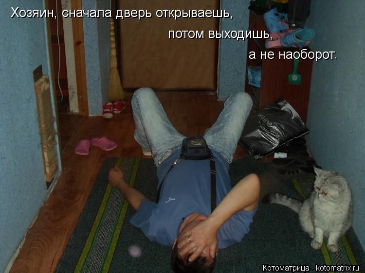 Котоматрица: Хозяин, сначала дверь открываешь, потом выходишь, а не наоборот .