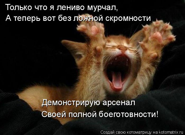 Котоматрица: Только что я лениво мурчал, А теперь вот без ложной скромности Демонстрирую арсенал Своей полной боеготовности!