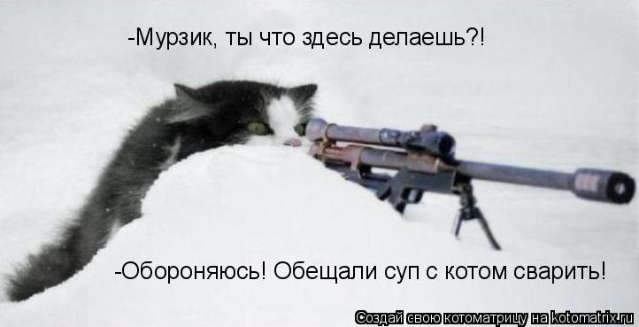 Котоматрица: -Мурзик, ты что здесь делаешь?! -Обороняюсь! Обещали суп с котом сварить!