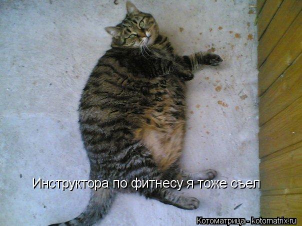 Котоматрица: Инструктора по фитнесу я тоже съел