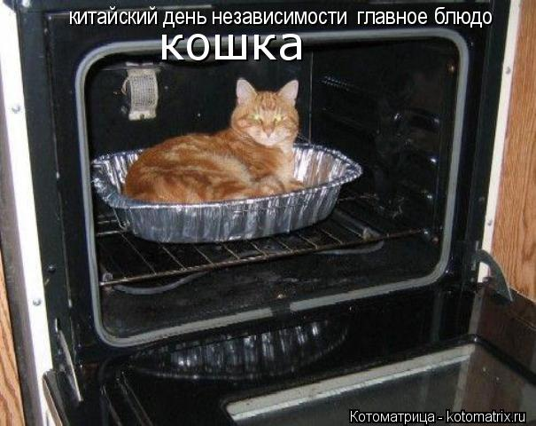 Котоматрица: китайский день независимости главное блюдо кошка