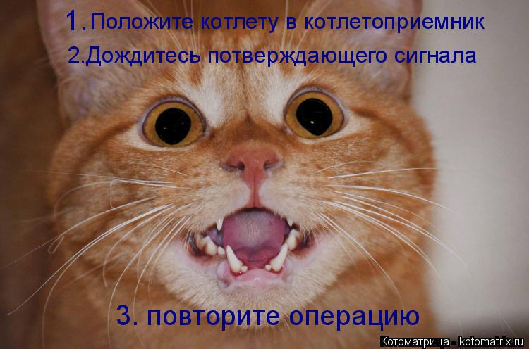Котоматрица: Положите котлету в котлетоприемник 2.Дождитесь потверждающего сигнала 3. повторите операцию 1.