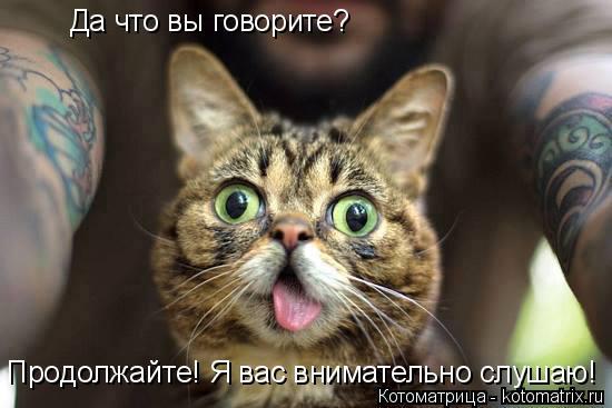 Котоматрица: Да что вы говорите? Продолжайте! Я вас внимательно слушаю!