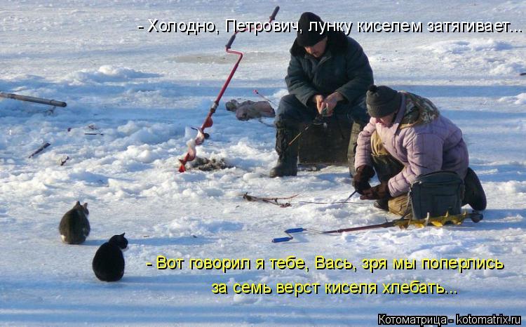 Котоматрица: - Холодно, Петрович, лунку киселем затягивает... - Вот говорил я тебе, Вась, зря мы поперлись за семь верст киселя хлебать...