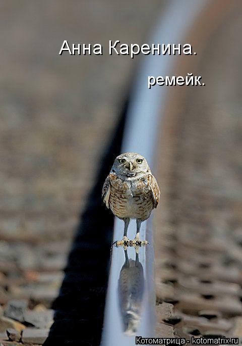 Котоматрица: Анна Каренина. ремейк.