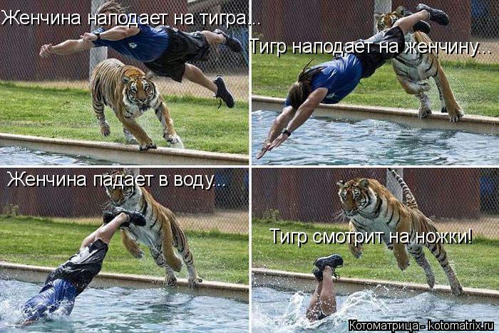Котоматрица: Женчина наподает на тигра... Тигр наподает на женчину... Женчина падает в воду... Тигр смотрит на ножки!