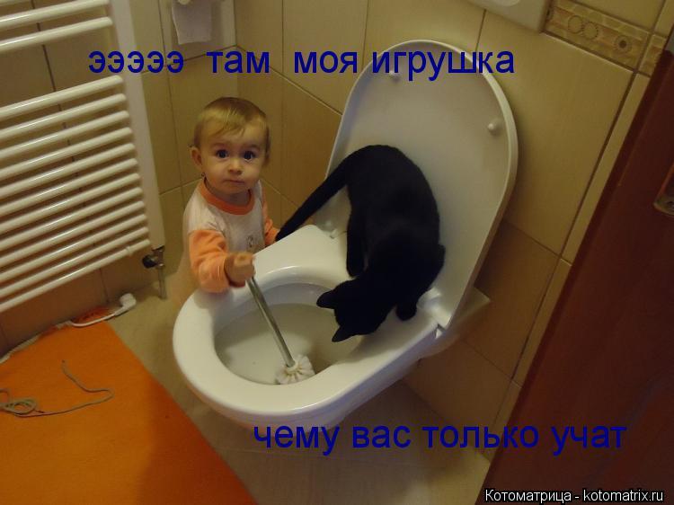 Котоматрица: эээээ  там  моя игрушка чему вас только учат