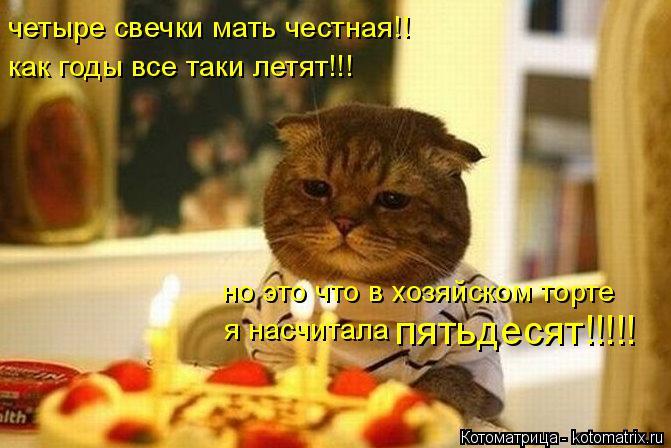 Котоматрица: четыре свечки мать честная!! как годы все таки летят!!! но это что в хозяйском торте я насчитала  пятьдесят!!!!!
