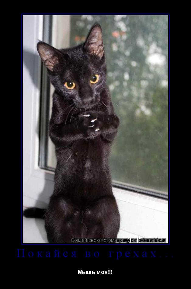 Котоматрица: Покайся во грехах... Мышь моя!!!