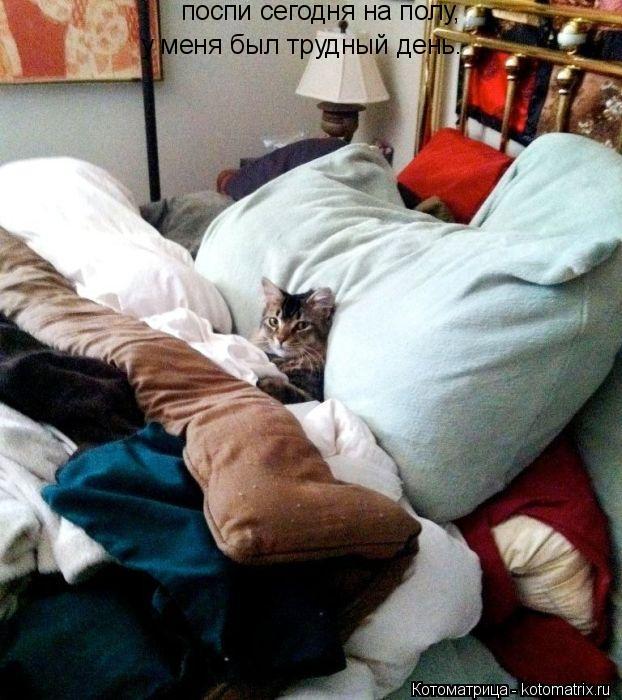 Котоматрица: поспи сегодня на полу, у меня был трудный день.