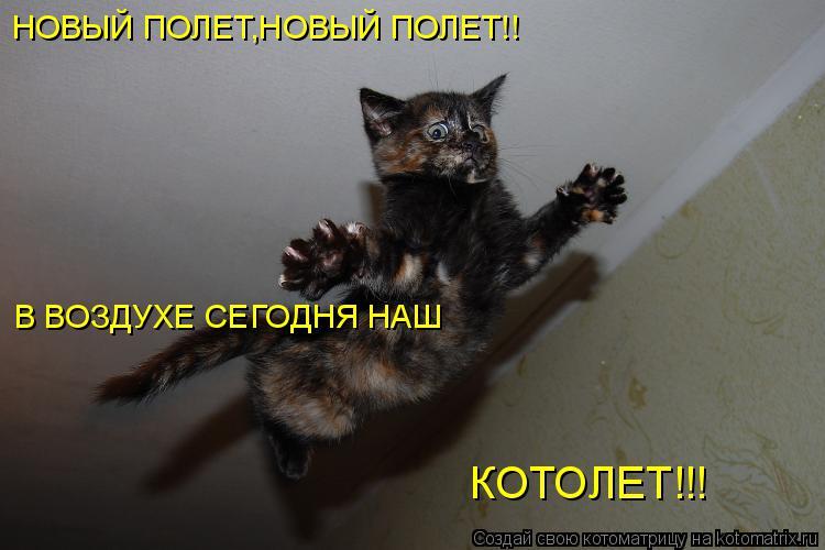 Котоматрица: НОВЫЙ ПОЛЕТ,НОВЫЙ ПОЛЕТ!! В ВОЗДУХЕ СЕГОДНЯ НАШ КОТОЛЕТ!!!