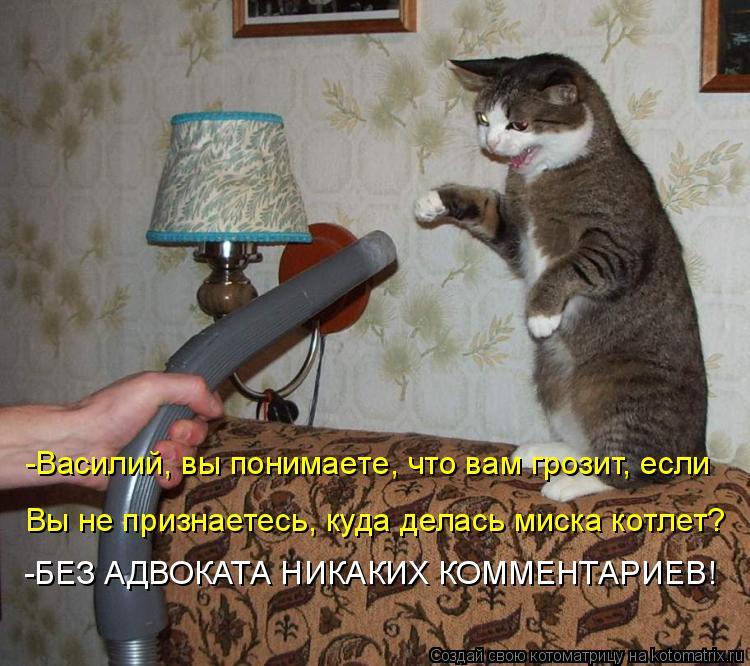 Котоматрица: -Василий, вы понимаете, что вам грозит, если Вы не признаетесь, куда делась миска котлет? -БЕЗ АДВОКАТА НИКАКИХ КОММЕНТАРИЕВ!