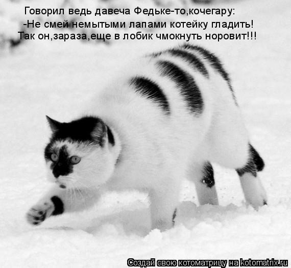 Котоматрица: Говорил ведь давеча Федьке-то,кочегару: -Не смей немытыми лапами котейку гладить!  Так он,зараза,еще в лобик чмокнуть норовит!!!