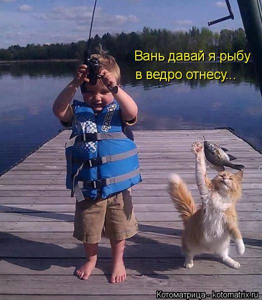 Котоматрица: Вань давай я рыбу. Вань давай я рыбу в ведро отнесу...