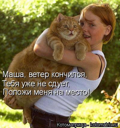 Котоматрица: Маша, ветер кончился, Тебя уже не сдует, Положи меня на место!