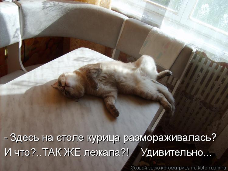 Котоматрица: - Здесь на столе курица размораживалась? И что?..ТАК ЖЕ лежала?!    Удивительно...