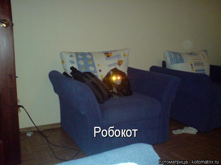Котоматрица: Робокот