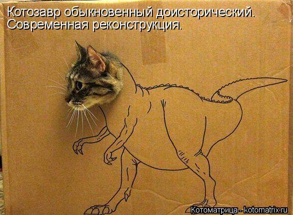 Котоматрица: Котозавр обыкновенный доисторический. Современная реконструкция.