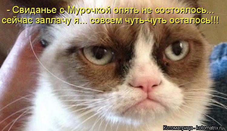 Котоматрица: - Свиданье с Мурочкой опять не состоялось... сейчас заплачу я... совсем чуть-чуть осталось!!!