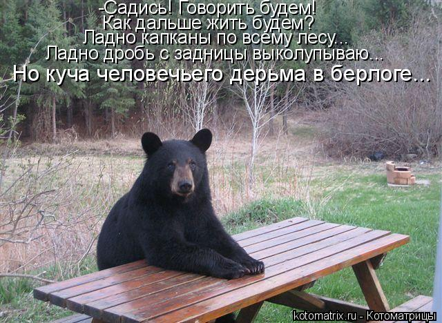 Котоматрица: -Садись! Говорить будем! Как дальше жить будем? Ладно капканы по всему лесу... Ладно дробь с задницы выколупываю... Но куча человечьего дерьма